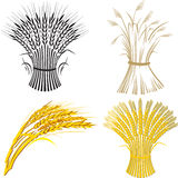 Vier tarweschoof Royalty-vrije Stock Afbeeldingen