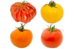 Vier tomaten Stock Afbeeldingen