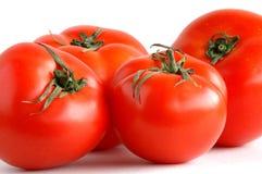 Vier tomaten Royalty-vrije Stock Foto