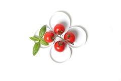 Vier tomaten met basilicumblad Stock Afbeeldingen