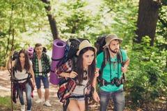 Vier Touristen erhielten im Wald verloren und versuchten, die Weise zu finden und schauten ernst und, alle fokussiert, die Rucksä stockbild