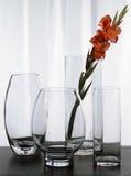 Vier Vazen van het Glas Royalty-vrije Stock Foto's