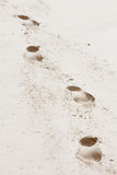Vier voetafdrukken van een mens op het strandzand Royalty-vrije Stock Foto