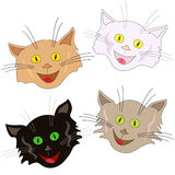Vier vrolijke kattengezichten als maskers Royalty-vrije Stock Foto's