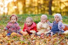 Vier vrolijke kleine babyzitting op de gele herfst Stock Afbeelding