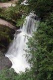 Vier Watervallengang in Brecon-Bakens Stock Foto