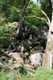 Vier Watervallengang in Brecon-Bakens Royalty-vrije Stock Afbeeldingen