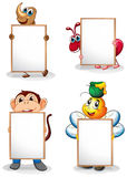 Vier whiteboards vor den vier Tieren Lizenzfreie Stockfotos