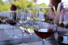 Vier wijnen Royalty-vrije Stock Foto's