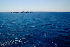 Vier Yachten im tiefen blauen Meer Stockfoto