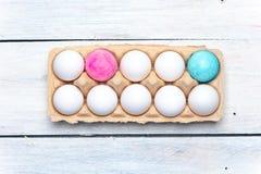 Vierend het nieuwe leven - container met wit en roze, en blauwe gekleurde eieren stock afbeelding