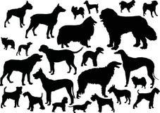Vierentwintig hondsilhouetten Stock Fotografie