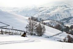 Vierfache Leitung auf Winterlandschaft Lizenzfreie Stockfotos