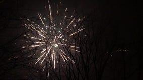 Viering met vuurwerk stock footage