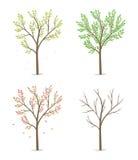 Vierjahreszeiten mit Baum Stockfotos