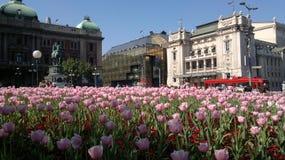 Vierkant in Belgrado Royalty-vrije Stock Foto's