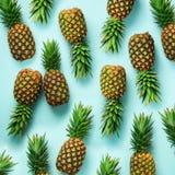 Vierkant gewas Verse ananassen op blauwe achtergrond Hoogste mening Pop-artontwerp, creatief concept De ruimte van het exemplaar  stock fotografie