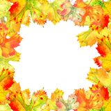 Vierkant kader van de bladeren van de dalingswijnstok De herfstgebladerte op de witte achtergrond Realistische geschilderde water royalty-vrije illustratie