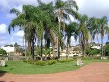 Vierkant met gazon en kokospalmen blauwachtige hemel met vele wolken royalty-vrije stock afbeelding