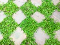 Vierkant van groen gras met steen Royalty-vrije Stock Afbeeldingen