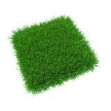 Vierkant van het aard het verse gras Stock Foto