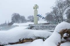 Vierkant van Vrijheid in Tallinn, de winter, sneeuw royalty-vrije stock foto