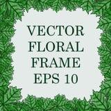 Vierkant vector bloemenkader met de bladeren van de esdoorn Royalty-vrije Stock Foto's