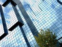 Vierkant Venster dat 5 bouwt Stock Afbeeldingen