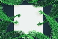 Vierkante affiche met bladeren Stock Afbeeldingen