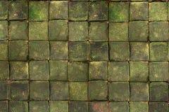 Vierkante baksteen met het mos op bovenkant Stock Fotografie