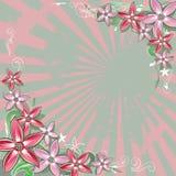 Vierkante bloemenachtergrond Stock Fotografie