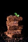 Vierkante brownies van de chocoladecake Stock Foto