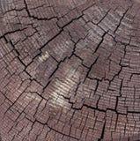 Vierkante Bruine houten die pin met zwarte barsten wordt gesneden stock foto's