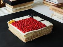 Vierkante cake op een zwarte achtergrond Mondriancake Royalty-vrije Stock Foto's