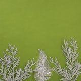Vierkante groene textuur met een twijg met zilveren fonkelingen stock fotografie
