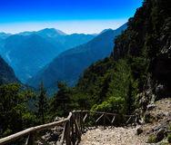 Vierkante levendige berg onderaan tredenlandschap Stock Foto's