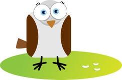 Vierkante Vogel Royalty-vrije Stock Afbeeldingen