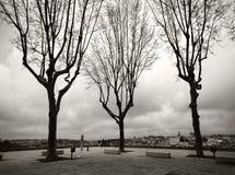 Vierkanten van de stad van Porto portugal stock fotografie