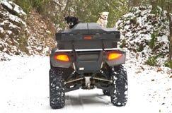 Vierrädrige Droschke und Hunde im Schnee Stockfoto