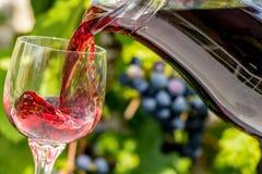Vierta el vino en la copa de vino fotos de archivo
