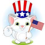 Viertel des Juli-Kätzchens Lizenzfreies Stockfoto