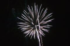 Viertel von Juli-Feier mit den explodierenden Feuerwerken, Unabhängigkeitstag, Ojai, Kalifornien Lizenzfreies Stockfoto