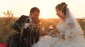 Vierten a la novia y al novio en los vidrios del champán que se sientan en espiguillas de la hierba en la puesta del sol Tarde ro metrajes