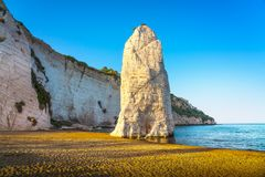 Vieste i Pizzomunno skały plaża, Gargano, Apulia, Włochy Obraz Stock