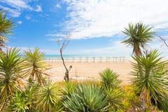 Vieste, Italië - bij aankomen en kalm schoon strand die van Vieste royalty-vrije stock fotografie