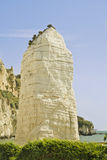 Vieste peschici cliff Royalty Free Stock Image