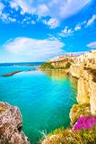 Vieste town on the rocks, Gargano, Apulia, Italy. Vieste town on the rocks, Gargano peninsula, Apulia, southern Italy, Europe Stock Images