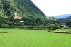Vietnam Stockbild
