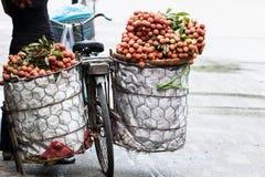 vietnam Foto de Stock