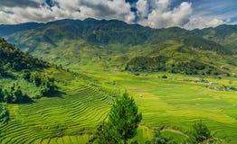 vietnam Imagens de Stock Royalty Free